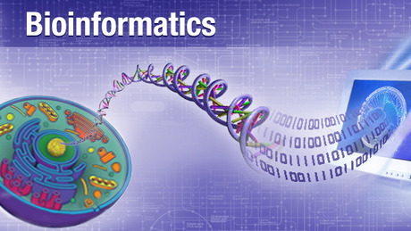 Free Online Course Bioinformatics Introduction And