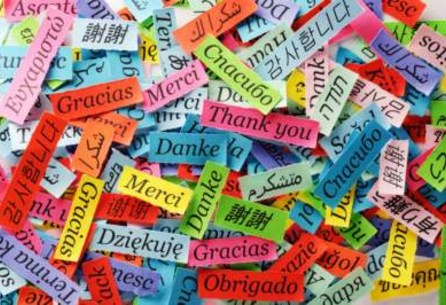 Be More Flexible: Learn A New Language With MOOCs