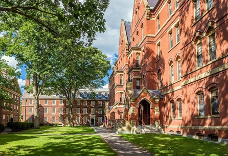 Couldn't get into Ivy league IRL? Here are 250 Free Online Courses from Ivy League Colleges
